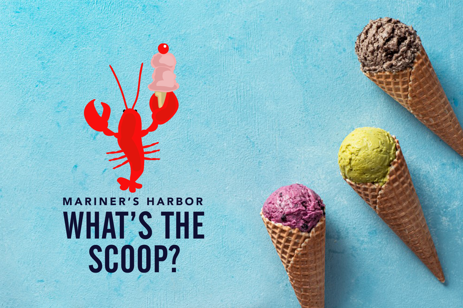 What's The Scoop? Photo